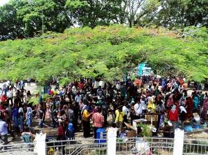 Suasana di taman sekitar Jam Gadang